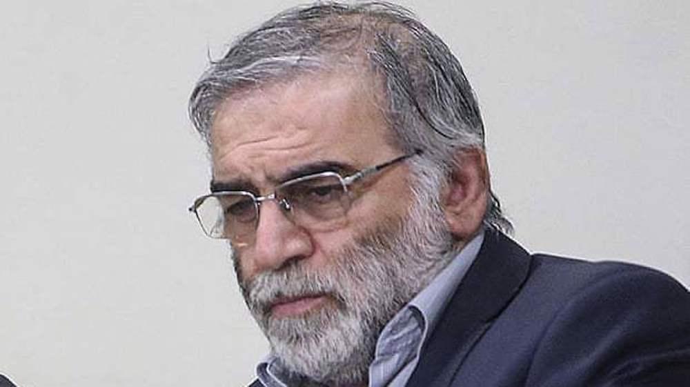 Scientist assassination show enemies' fear of Iran advances