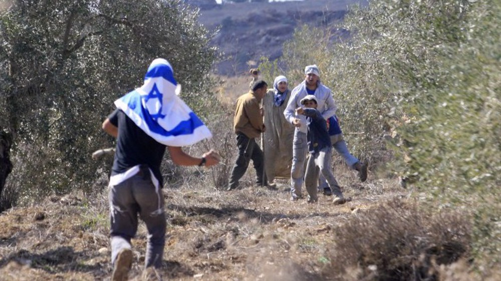 Israeli settlers violently attack Palestinian olive farmers
