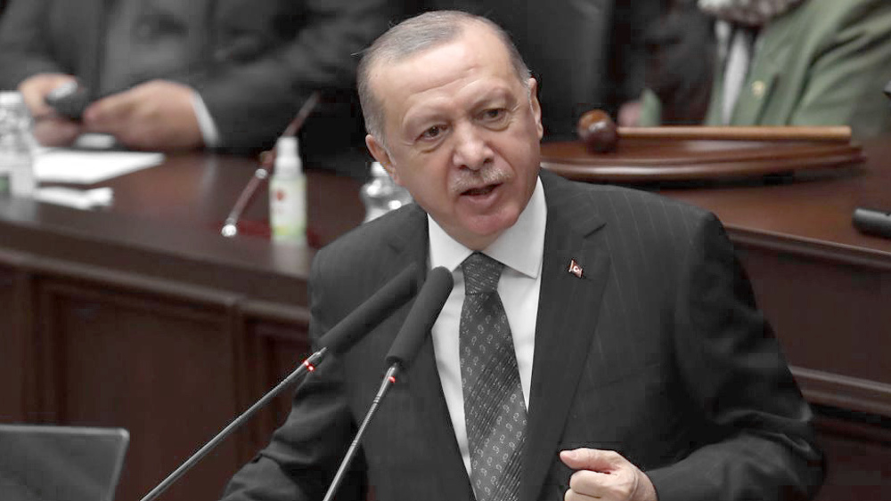 Erdogan says two-state solution only option for divided Cyprus