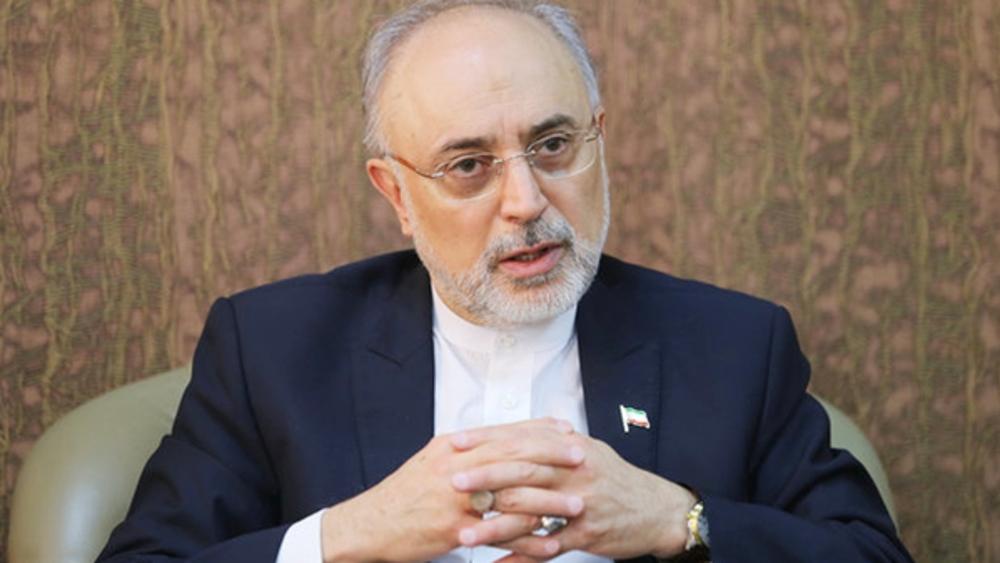 AEOI chief: Intl. community, IAEA must address 'nuclear terrorism' against Iran
