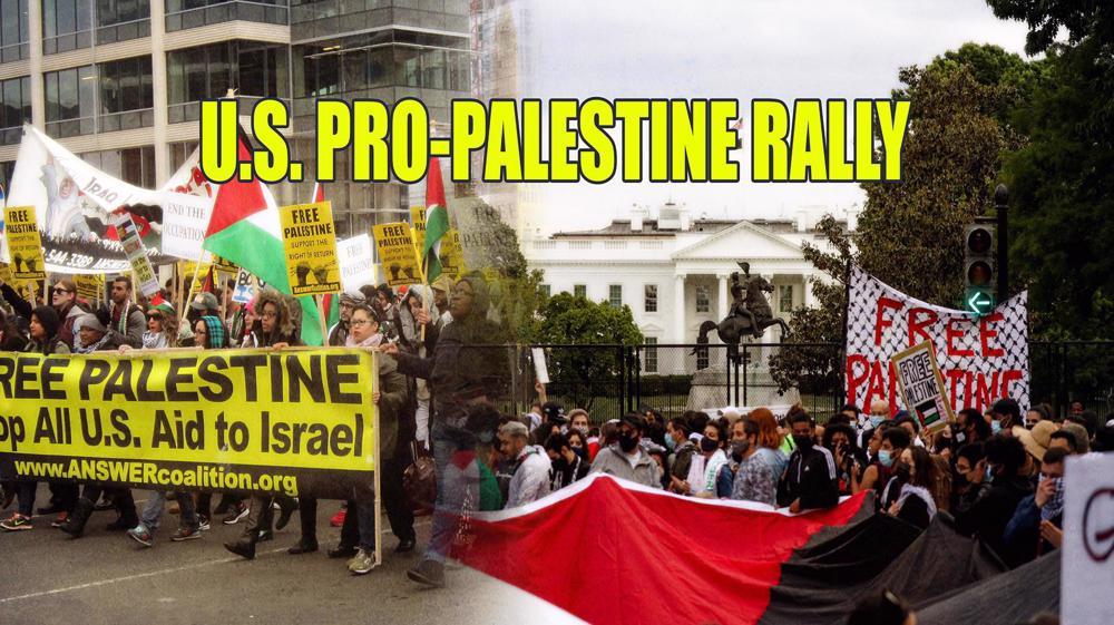 Pro-Palestine rally in Washington DC