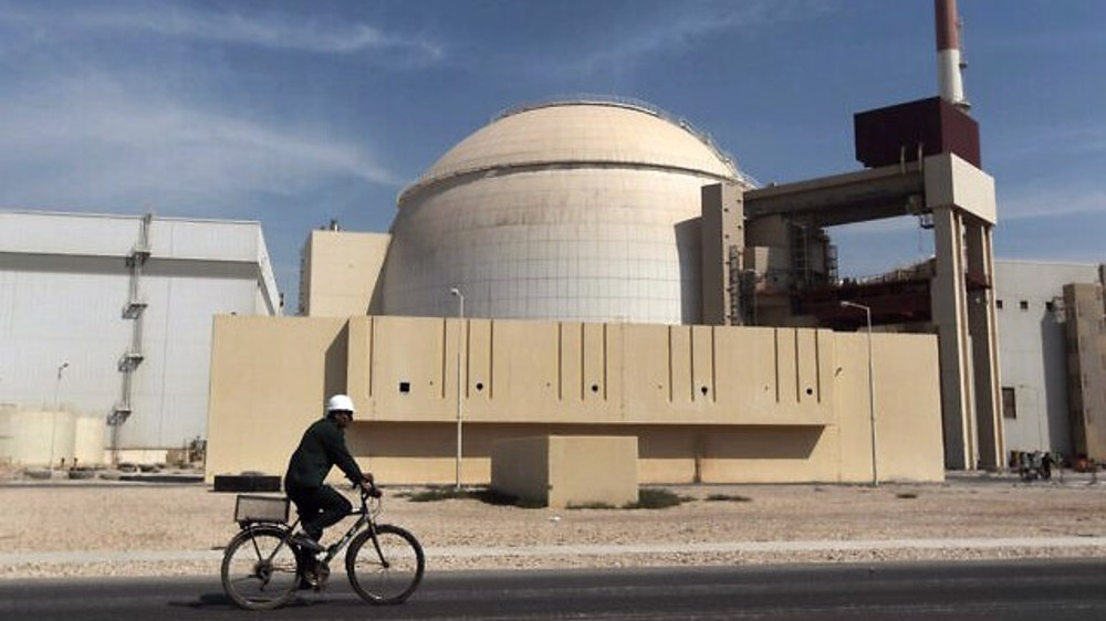 Bushehr nuclear plant temporarily shut down over 'technical glitch'