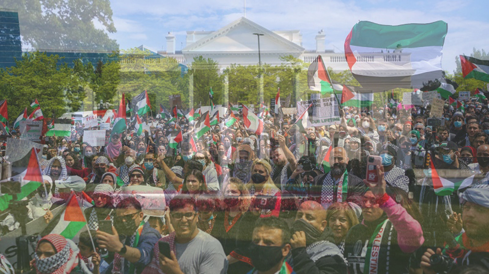 US march in solidarity with Palestine