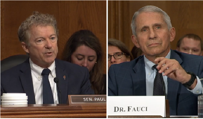 Sen. Rand Paul: Fauci, NIH could be partly responsible for Covid-19 pandemic