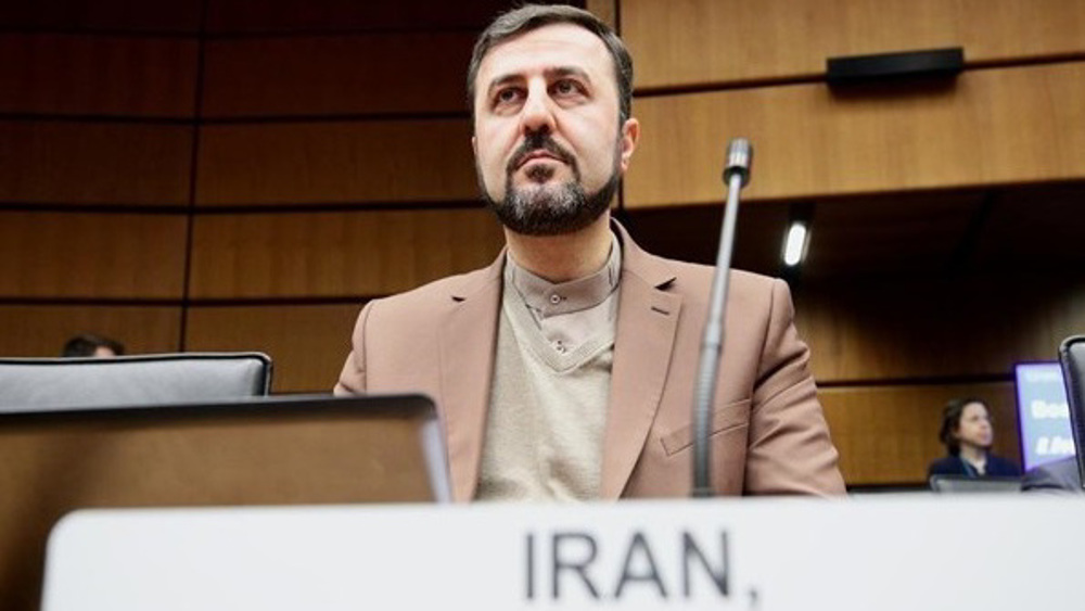 Envoy reflects on Leader's warning of JCPOA-enabled Western meddling