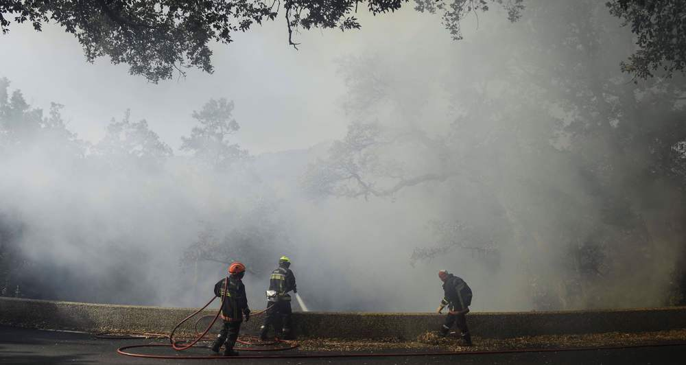Thousands evacuated in southern France as 'fierce' wildfire spreads