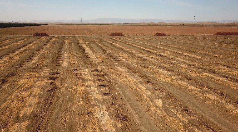 'Devastating' situation: Historic drought threatens US food supply