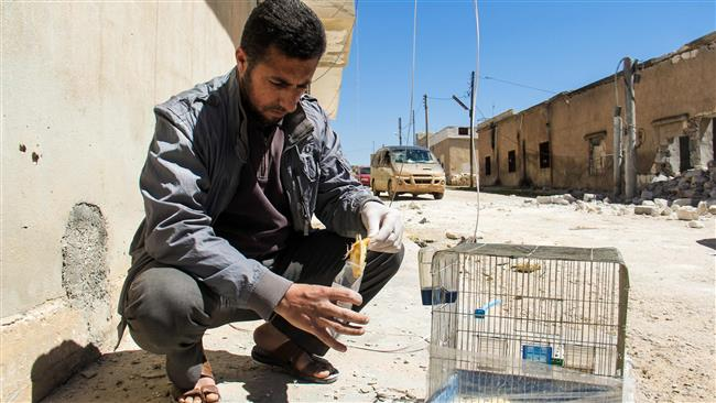 'Syria's foes behind Idlib attack to cover up losses'