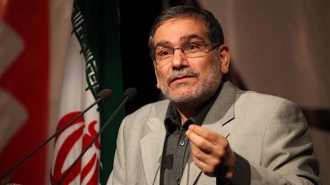 'Iran forces in Iraq, Syria for anti-terror purposes'