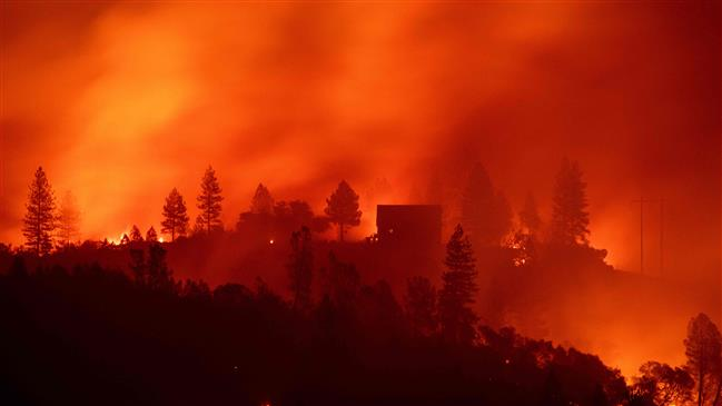 Climate change will hit US economy and kill thousands: Report