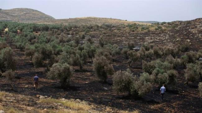 Israel reacts only after fire in village nears settlement