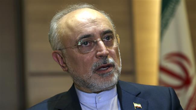 Iran increases daily uranium enrichment capacity: Salehi