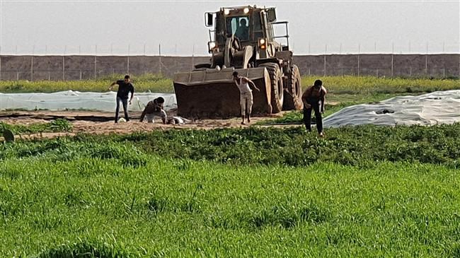 'Israel's desecration of Palestinian body in Gaza war crime'