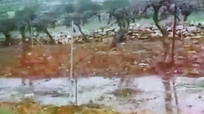 Israeli settlers flood Palestinian vineyards with sewage again