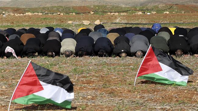 There is only one state, Palestine: Analyst