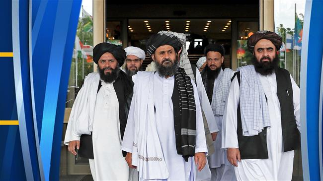Taliban offers ceasefire in return for release of its inmates