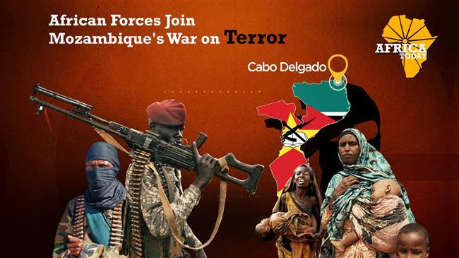 Mozambique's war on terror
