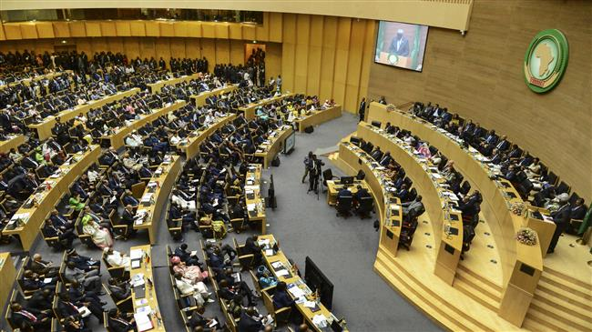 Over 200 dignitaries protest Israel observer status at African Union